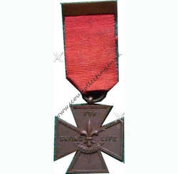 Bronze Cross Medal Iss 1