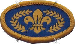 Chief's Scout Gold Post 2002